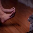 Katzen-20170108_0030