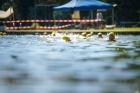 Triathlon2019-046